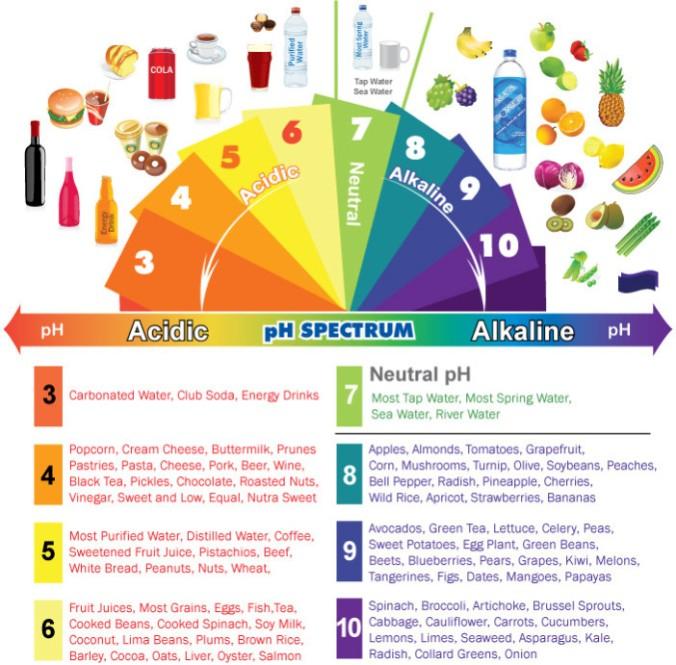 acidic-alkaline-phchart.jpg