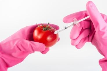 GMOs.jpeg